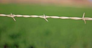 Primo piano di filo spinato Immagini Stock Libere da Diritti