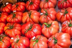 Primo piano di grandi pomodori rosa di Monterosa da vendere Fotografia Stock