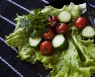 Primo piano di insalata Fotografie Stock Libere da Diritti