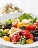 Primo piano di insalata variopinta Immagine Stock