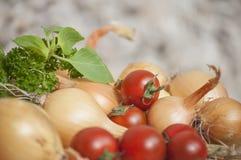 Primo piano di intere cipolle del rendimento ecologico di autunno e basilico e prezzemolo freschi al sole Fotografie Stock