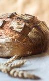 Primo piano di intero pane di lievito naturale del grano Fotografia Stock Libera da Diritti