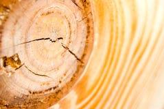 Primo piano di legno Immagini Stock