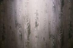 primo piano di legno del fondo di struttura della parete fotografie stock libere da diritti