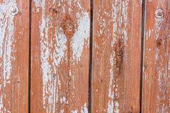 Primo piano di legno del recinto di struttura del fondo Copi il testo dello spazio Fotografie Stock