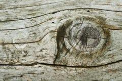 Primo piano di legno di struttura Fotografia Stock Libera da Diritti