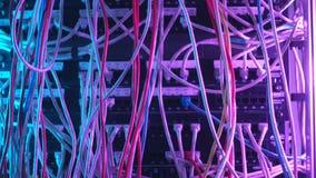 Primo piano di molti cavi variopinti nell'attrezzatura del fornitore di servizi Internet azione Concetto di hardware della rete d archivi video