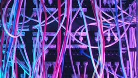 Primo piano di molti cavi variopinti nell'attrezzatura del fornitore di servizi Internet azione Concetto di hardware della rete d video d archivio