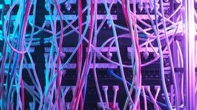 Primo piano di molti cavi variopinti nell'attrezzatura del fornitore di servizi Internet azione Concetto di hardware della rete d stock footage