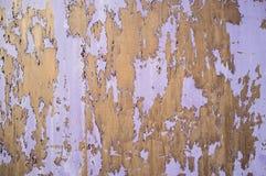 Primo piano di pittura di sfaldamento porpora Fotografia Stock