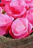 Primo piano di rosa di bello colore rosa Immagine Stock