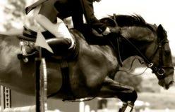 Primo piano di salto #2 (seppia) di esposizione equestre) Immagini Stock Libere da Diritti