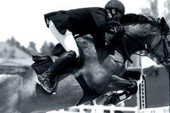 Primo piano di salto di esposizione equestre (BW) Fotografia Stock