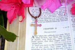 Primo piano di scripture di Pasqua con le azalee rosa luminose fotografia stock libera da diritti
