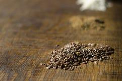 Primo piano di seme di lino Fotografia Stock Libera da Diritti
