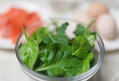 Primo piano di spinaci in ciotola Fotografia Stock