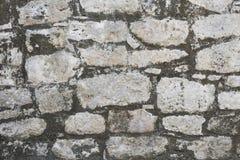 Primo piano di struttura antica delle rovine maya di Coba, Messico della parete di pietra Fotografia Stock Libera da Diritti