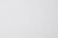 Primo piano di struttura del cuoio bianco uso per fondo Immagine Stock Libera da Diritti