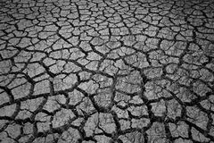 Primo piano di terra incrinata asciutta con erba viva Fotografia Stock