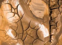 Primo piano di terreno asciutto nel clima arido Fotografia Stock Libera da Diritti