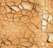 Primo piano di terreno asciutto nel clima arido Immagine Stock Libera da Diritti