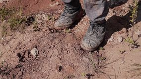 Primo piano di un barbone che cammina attraverso il deserto con una fasciatura sul suo fronte archivi video
