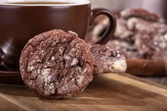Primo piano di un biscotto del fondente di cioccolato fotografie stock libere da diritti