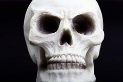 Primo piano di un cranio umano Fotografie Stock