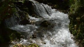 Primo piano di un fiume rapido della montagna con le rapide archivi video