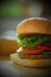 Primo piano di un hamburger del formaggio Fotografie Stock Libere da Diritti