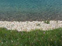 Primo piano di un lago alpino cristallino in Alpe di Siusi, Tirolo del sud - Italia Immagini Stock Libere da Diritti