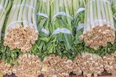 Primo piano di un mazzo fresco di porro al mercato degli agricoltori, allium a Fotografie Stock Libere da Diritti