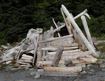 Primo piano di un riparo del legname galleggiante fotografie stock