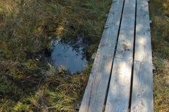 Primo piano di un sentiero per pedoni di legno attraverso l'IBM Moorland in Austria settentrionale, in autunno in anticipo fotografia stock
