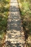 Primo piano di un sentiero per pedoni di legno attraverso l'IBM Moorland in Austria settentrionale, in autunno in anticipo immagini stock libere da diritti