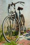 Primo piano di una bicicletta blu Fotografie Stock