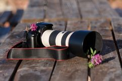 Primo piano di una macchina fotografica del dslr circondata dai fiori Fotografie Stock Libere da Diritti