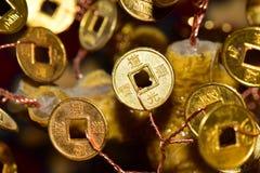 Primo piano di una moneta di oro con i segni su un albero dei soldi immagine stock