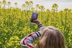 Primo piano di una ragazza che prende le immagini sul telefono un giorno soleggiato in un giacimento del seme di ravizzone fotografia stock libera da diritti