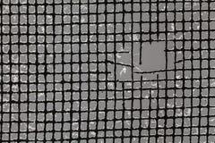 Primo piano di una rete metallica lacerata della zanzara. Immagini Stock