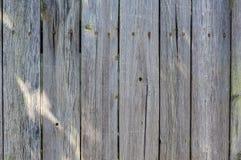 Primo piano di vecchio recinto di legno Struttura e fondo del recinto Fotografia Stock Libera da Diritti