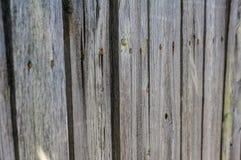 Primo piano di vecchio recinto di legno Struttura e fondo del recinto Fotografia Stock