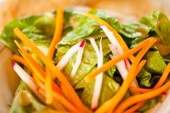 Primo piano di verdure dell'insalata immagine stock libera da diritti