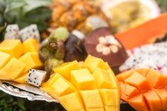 Primo piano esotico della frutta sopra Fotografie Stock Libere da Diritti