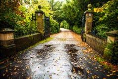 Primo piano europeo degli elementi del parco di bello autunno Fotografie Stock