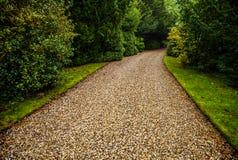 Primo piano europeo degli elementi del parco di bello autunno Fotografie Stock Libere da Diritti