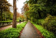 Primo piano europeo degli elementi del parco di bello autunno Fotografia Stock