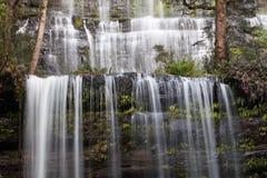Primo piano famoso di Russel Falls su acqua corrente, nazione del giacimento del supporto Fotografie Stock