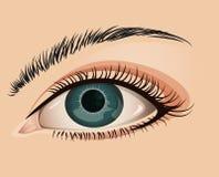 Primo piano femminile dell'occhio Fotografia Stock