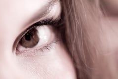 Primo piano femminile dell'occhio fotografia stock libera da diritti